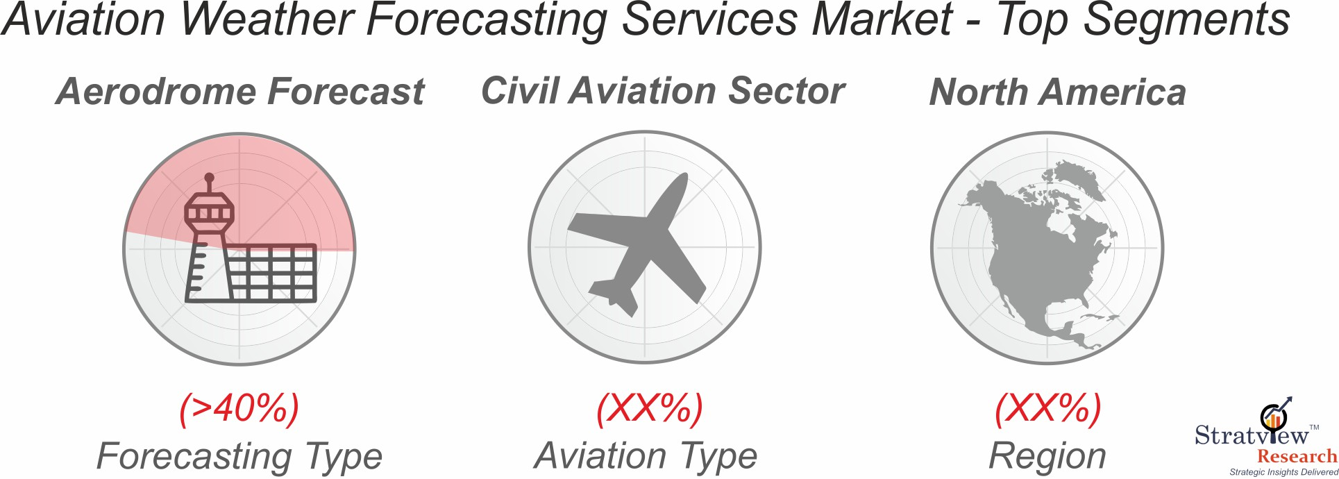 Aviation Weather Forecasting services market segment analysis