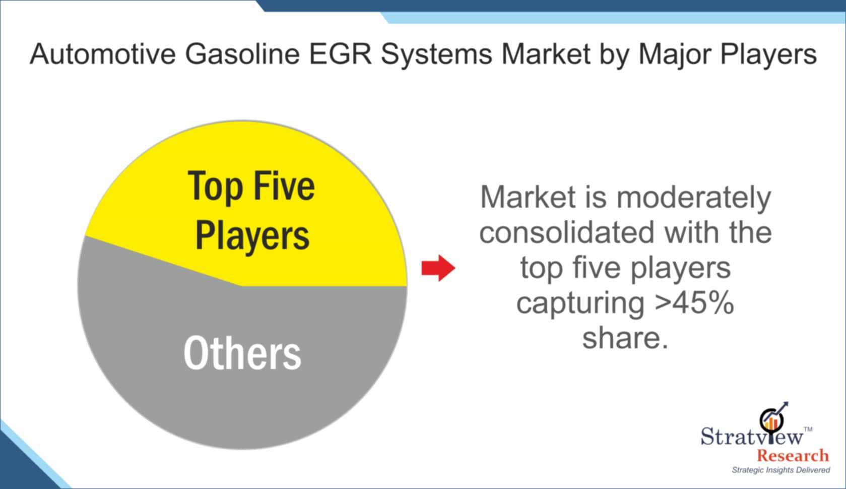 Automotive Gasoline EGR System Market Share
