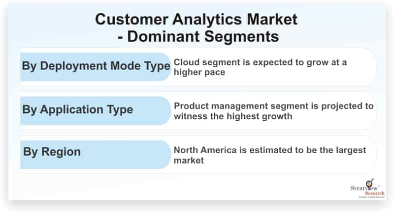 Customer-Analytics-Market-Dominant-Segments